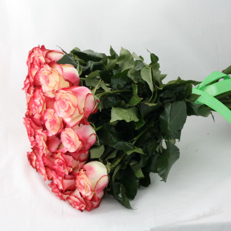 Букет из двухцветных роз, цветов